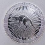 Kangaroo zilver ounce